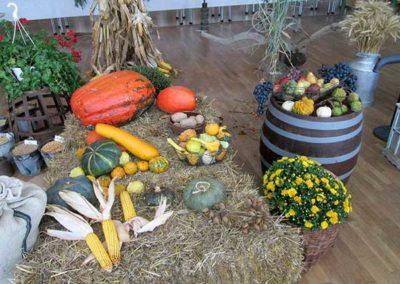 jesenna-vystava-v-obci---expozicia-druzstva1