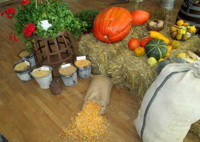 jesenna-vystava-v-obci---expozicia-druzstva3