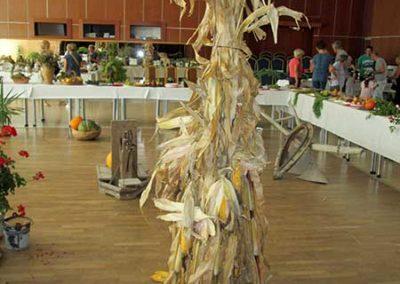 jesenna-vystava-v-obci---expozicia-druzstva7