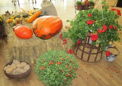 jesenna-vystava-v-obci---expozicia-druzstva8